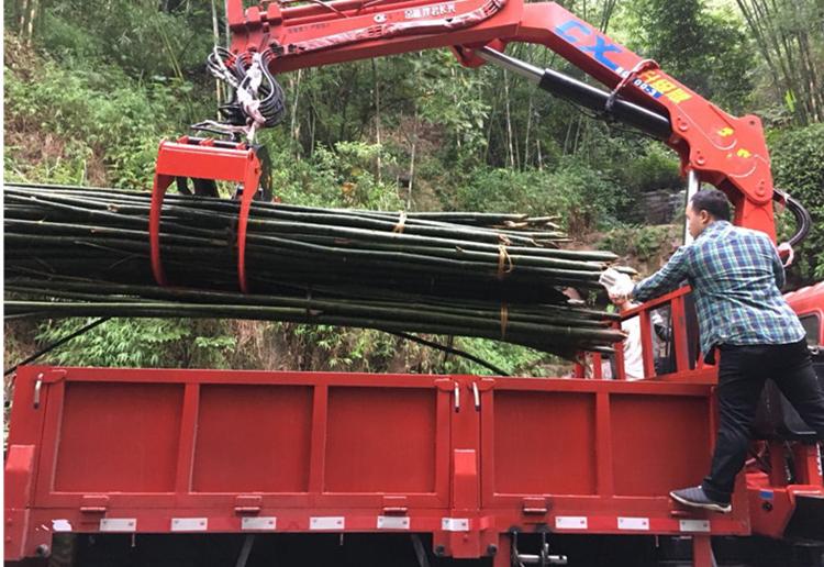 东风专底12吨随车吊实物抓取图